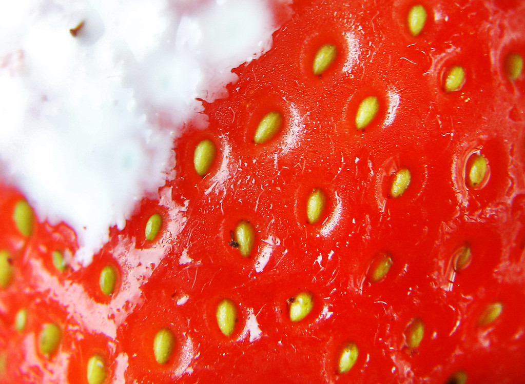 . LONDON, ENGLAND - JULY 02:  A single strawberry with cream is seen in this close up image at the Wimbledon Lawn Tennis Championships on July 2, 2013 in London, England.  (Photo by Peter Macdiarmid/Getty Images)