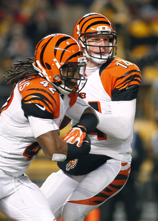 . Andy Dalton #14 of the Cincinnati Bengals drops back to pass against the Pittsburgh Steelers during the game on December 15, 2013 at Heinz Field in Pittsburgh, Pennsylvania.  (Photo by Justin K. Aller/Getty Images)