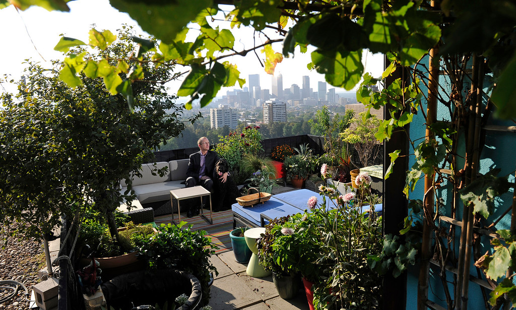 . Lobbyist Ted Trimpa\'s rooftop container garden frames a view of the Denver skyline in late summer. (Cyrus McCrimmon, The Denver Post)
