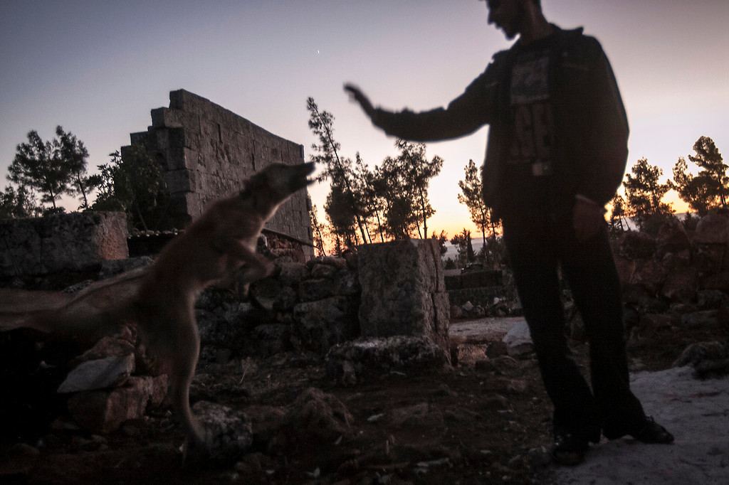 . In this Thursday, Sep. 26, 2013 photo, a displaced Syrian youth plays with his pet at sunset near Kafer Rouma, amid ancient ruins used as temporary shelter by those families who have fled from the heavy fighting and shelling in the Idlib province countryside of Syria. Some 2 million people have fled Syria since the countryís uprising against President Bashar Assad erupted in March 2011, according to the United Nations. Over that time, more than 4 million Syrians also have been internally displaced within the country.(AP Photo)