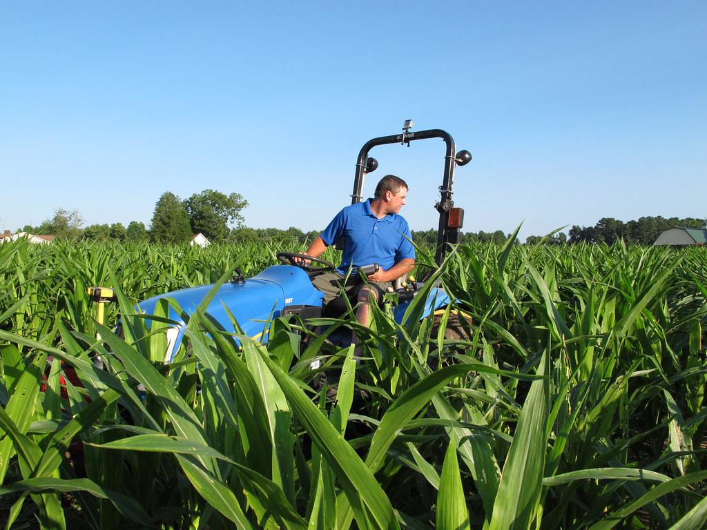 . Timothy Day backs up his tractor as he cuts a design into a corn field in Fuquay-Varina, N.C., on Saturday, Aug. 24, 2013. The Virginia man travels the country for Maize Quest, using GPS equipment to cut out elaborate mazes for the fall tourist season. (AP Photo/Allen G. Breed)
