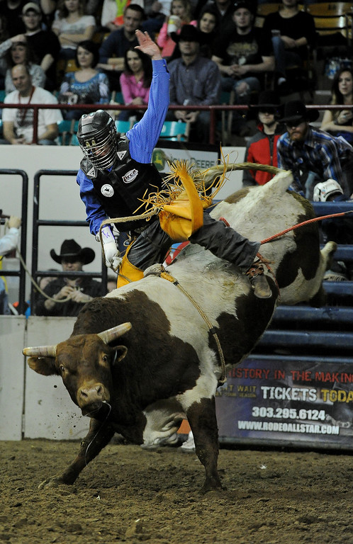 . DENVER, CO- JANUARY 27:  Trevor Kastner, of Ardmore, Oklahoma, tries to hang on during the Bull Riding competition of the Pro Rodeo.  The final day of the 2013 National Western Stock show was Sunday, January 27th.  One of the big events for the day was the PRCA Pro Rodeo finals in the Coliseum.  The event featured bareback riding, steer wrestling, team roping, saddle bronc riding, tie down roping, barrel racing and bull riding.  (Photo By Helen H. Richardson/ The Denver Post)