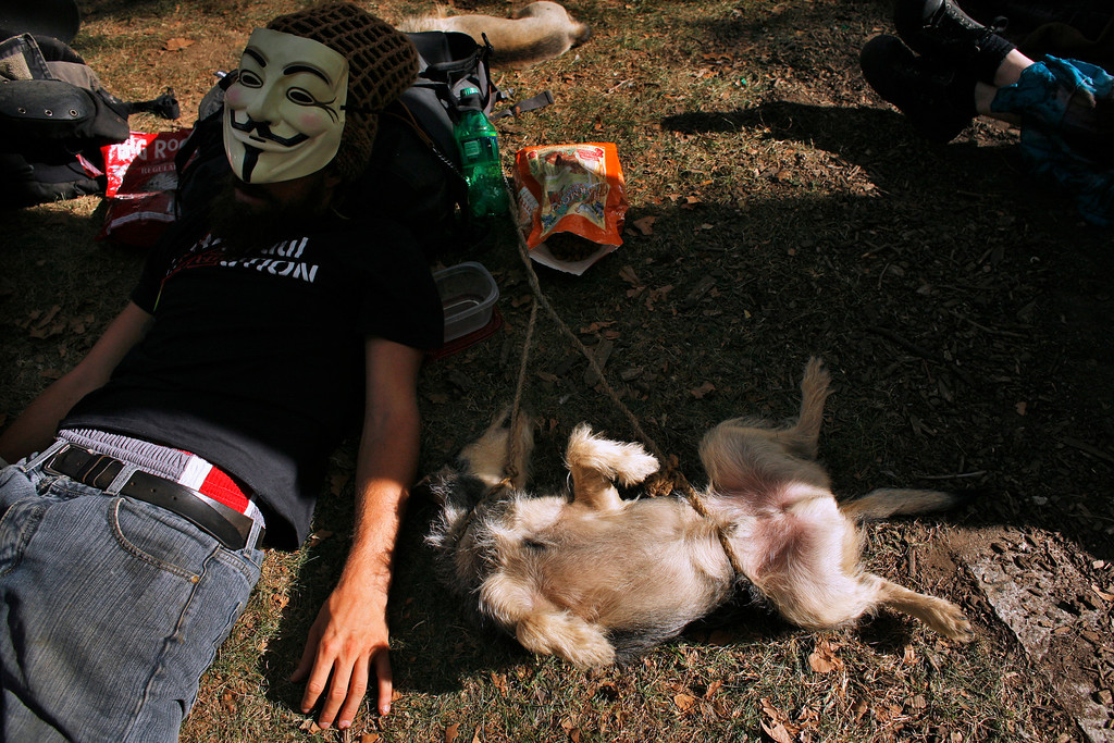 ". An Occupy Wall Street protester takes a nap next to his dog during activities organized by the movement ""OWS\"" at Foley Square, Lower Manhattan in New York, September 16, 2012. REUTERS/Eduardo Munoz"