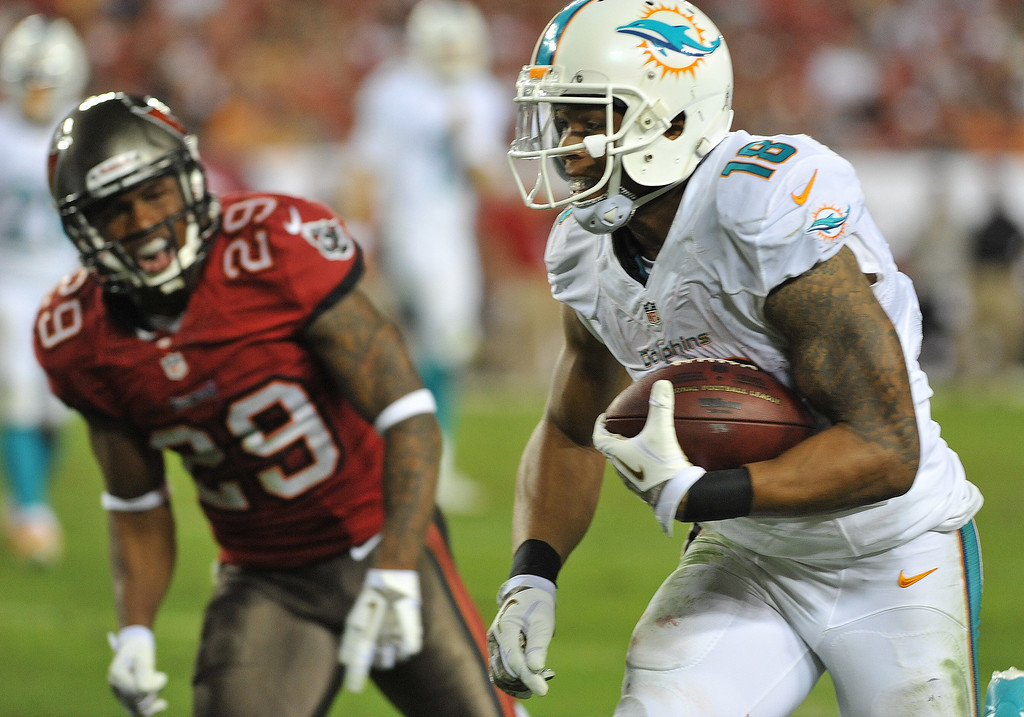 . Wide receiver Rishard Matthews #18 of the Miami Dolphins runs for a touchdown against the Tampa Bay Buccaneers November 11, 2013 at Raymond James Stadium in Tampa, Florida. Tampa won 22 - 19.  (Photo by Al Messerschmidt/Getty Images)