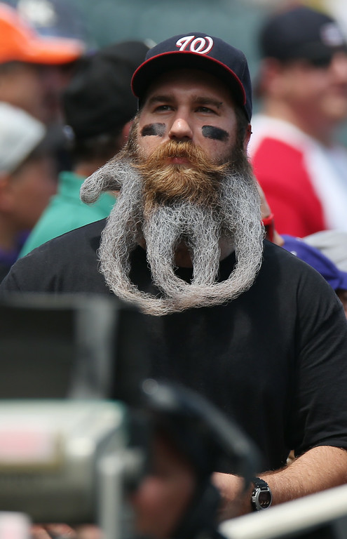 . His beard curled to copy his favorite team\'s logo, Washington Nationals fan Eric Brooks looks on from the third base stands as the Colorado Rockies host the Nationals in the first inning of a baseball game in Denver on Wednesday, July 23, 2014. (AP Photo)