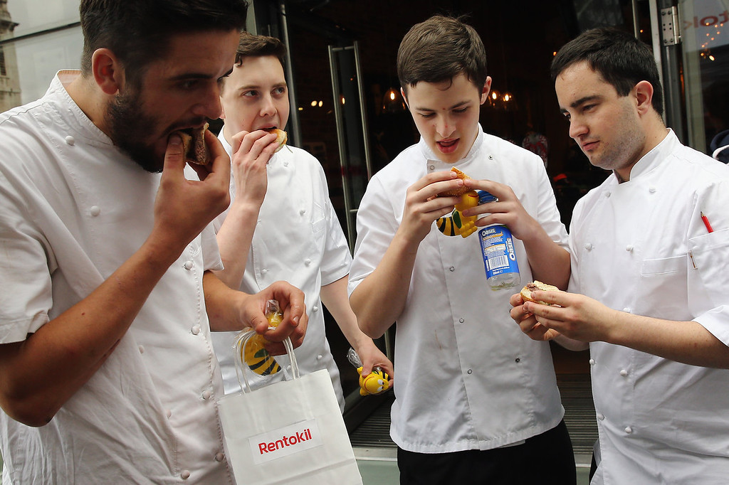 . A group of passing chefs try pigeon burgers on a \'Pop Up\' stand at One New Change on August 15, 2013 in London, England.  The pest control specialist, Rentokill are celebrating their 85th anniversary, and for one day only were giving passers by the chance to try sweet chilli pigeon burgers, salted weaver ants, BBQ Mole Crickets and chocolate dipped worms amongst other things on their stand.  (Photo by Dan Kitwood/Getty Images)