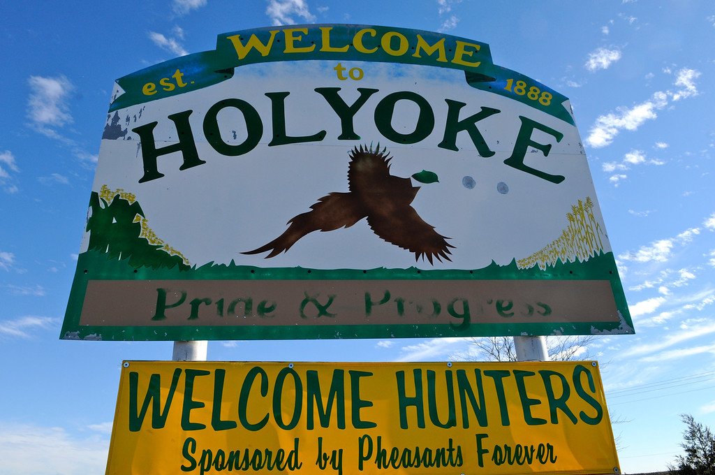 . Holyoke, near the Nebraska border in Phillips County, rolls out the welcome mat for Colorado pheasant hunters. Only Yuma County, just south, saw more pheasant hunters in the state last year. Scott Willoughby, The Denver Post