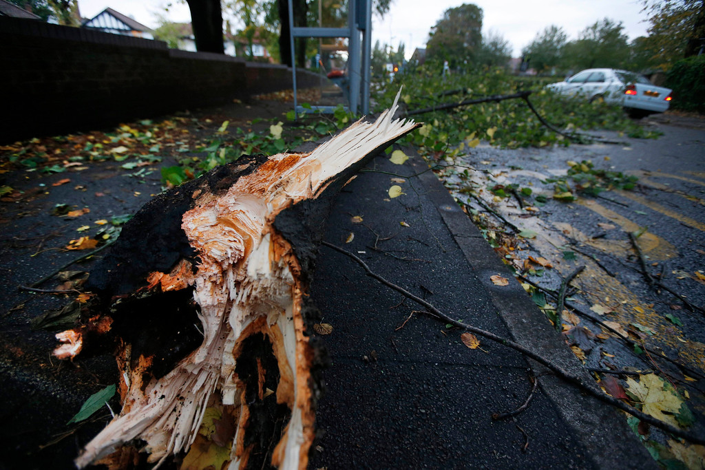. A fallen tree branch partially blocks a pavement and road in London, Monday, Oct. 28, 2013.(AP Photo/Lefteris Pitarakis)
