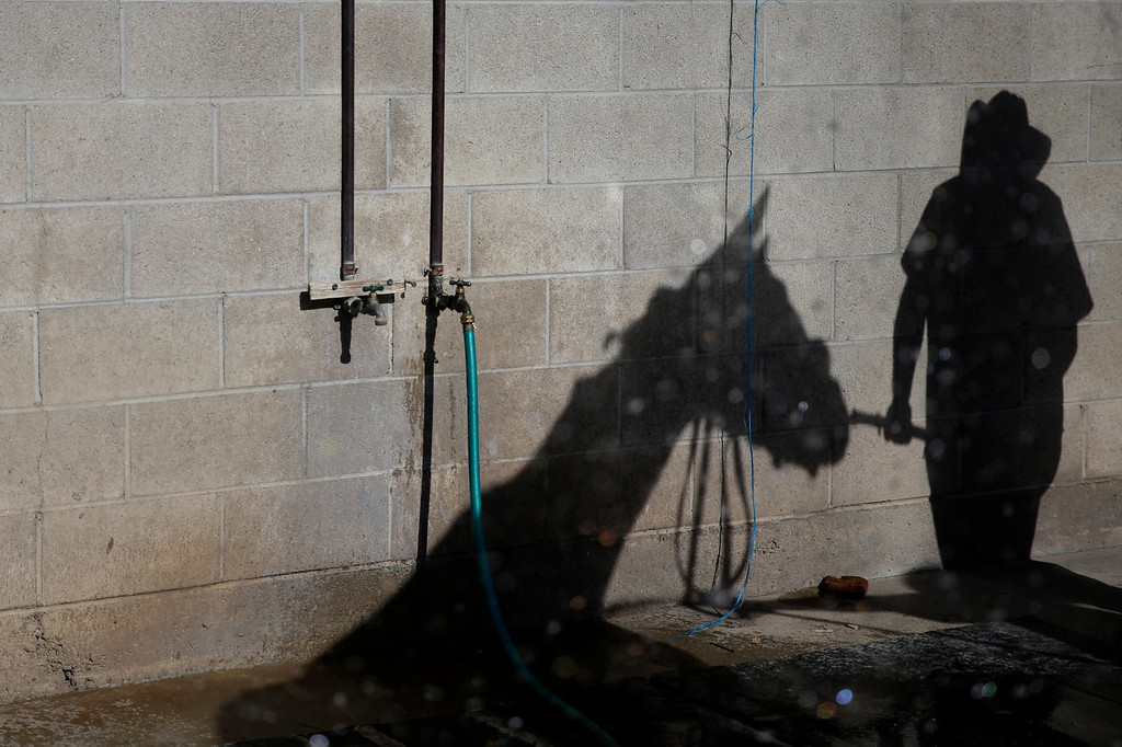 . A worker and a horse cast shadows on the wall as he bathes the horse in the stable area at Betfair Hollywood Park on Sunday, Dec. 15, 2013, in Inglewood, Calif. After 75 years of thoroughbred racing, Betfair Hollywood Park is closing for good. The 260-acre track that hosted Seabiscuit and the first Breeders\' Cup in 1984 will be turned into a housing and retail development starting next year. (AP Photo/Jae C. Hong)