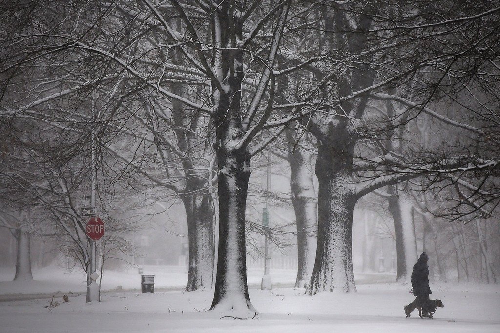 . A person walks through a snow-shrouded park on March 8, 2013 in the Brooklyn borough of New York City. (Photo by Spencer Platt/Getty Images)