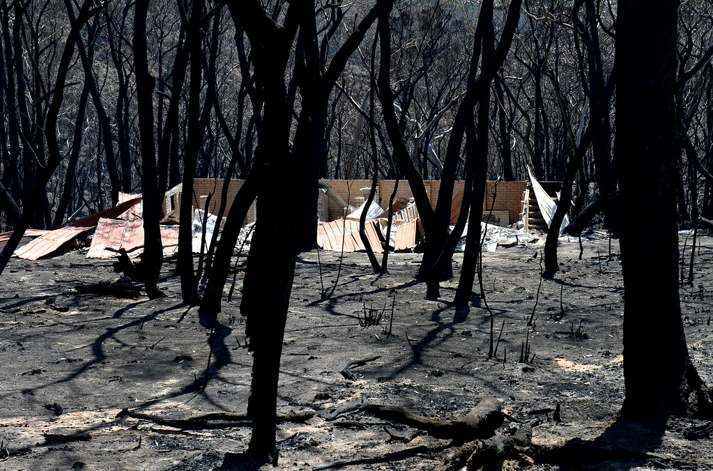". A burnt out house sits amongst blackened trees in Mount Victoria in the Blue Mountains on October 21, 2013, as volunteer fire brigades race to tame an enormous blaze with officials warning it could merge with others to create a ""mega-fire\"" if weather conditions worsen.   AFP PHOTO/William WEST/AFP/Getty Images"