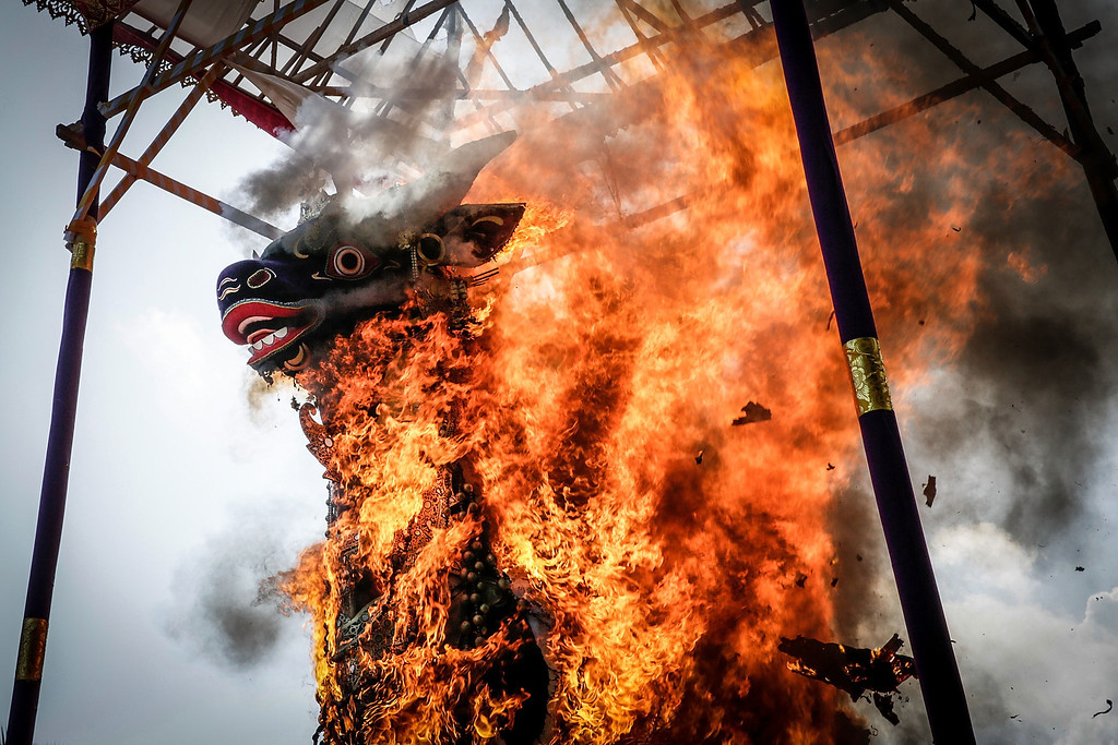 . Fire engulfs the bull-shaped sarcophagus during the Royal cremation ceremony on November 1, 2013 in Ubud, Bali, Indonesia. (Photo by Agung Parameswara/Getty Images)