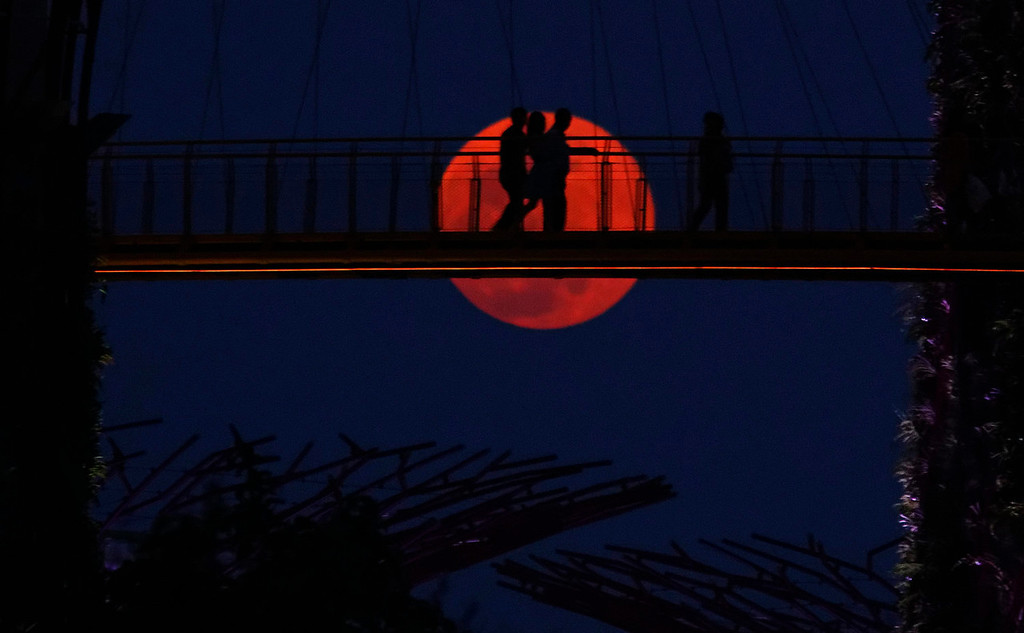 ". Tourists walk on the elevated skywalk of the Supertrees Grove as a ""super moon\"" rises at the Gardens by the Bay in Singapore at dusk on June 23, 2013. The largest full moon of the year, called a \""super moon,\"" will light up the night sky this weekend.  REUTERS/Tim Chong"