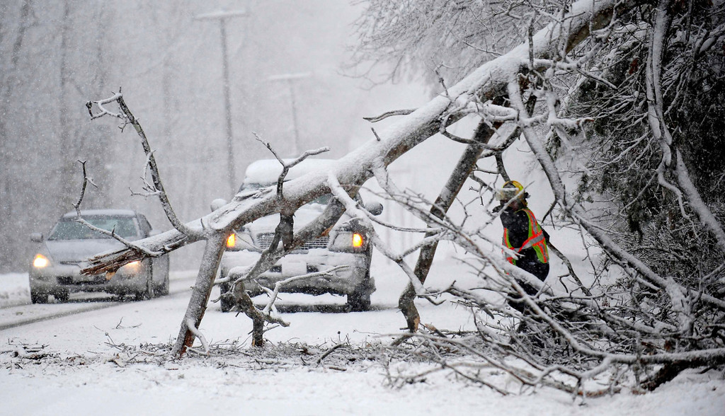 . Volunteers remove a downed tree on the road  near Chancellorsville, Va.  A snowstorm blanketed the Fredericksburg region on March 6, 2013, closing schools, county governments and roads.   (AP Photo/The Free Lance-Star, Reza A. Marvashti)