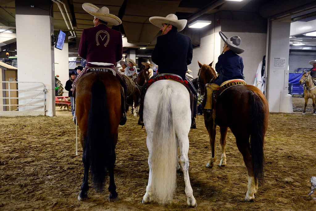 . Performers watch the arena floor during National Western Stock Show\'s Mexican Rodeo Extravaganza at the Denver Coliseum on Sunday, Jan. 13, 2013. AAron Ontiveroz, The Denver Post