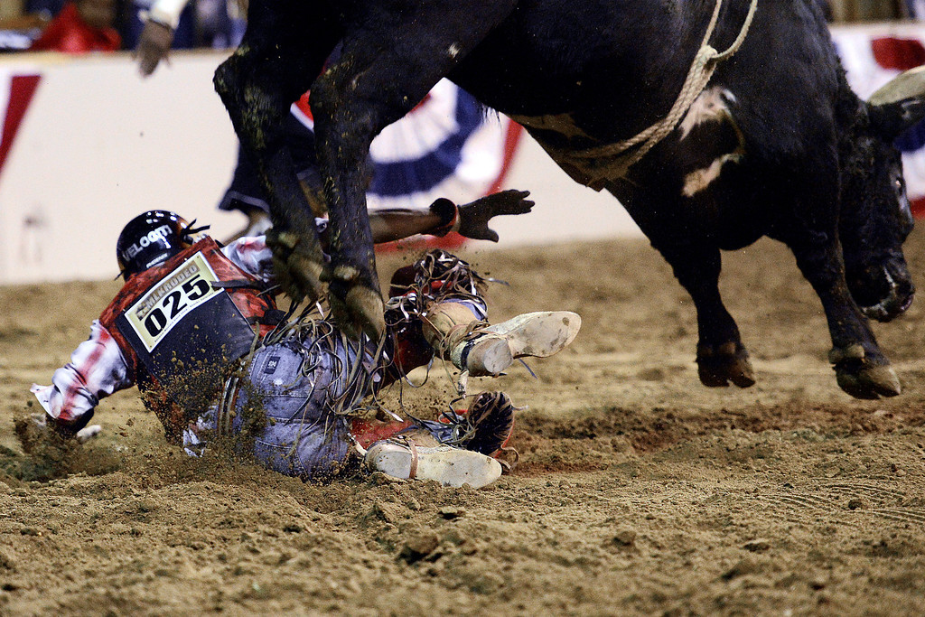. DENVER, CO. - JANUARY 21:  Joe Stover gets trampled by his bull during the bull riding performance at the National Western Stock Show Martin Luther King Heritage Rodeo January 21, 2013 (Photo By AAron Ontiveroz / The Denver Post)