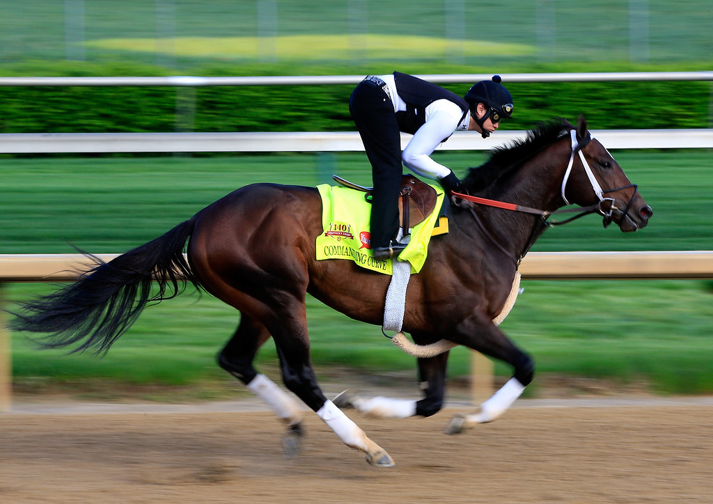 . Kentucky Derby contender Commanding Curve works out on the track during early morning workouts at Churchill Downs on May 1, 2014 in Louisville, Kentucky.  (Photo by Jamie Squire/Getty Images)