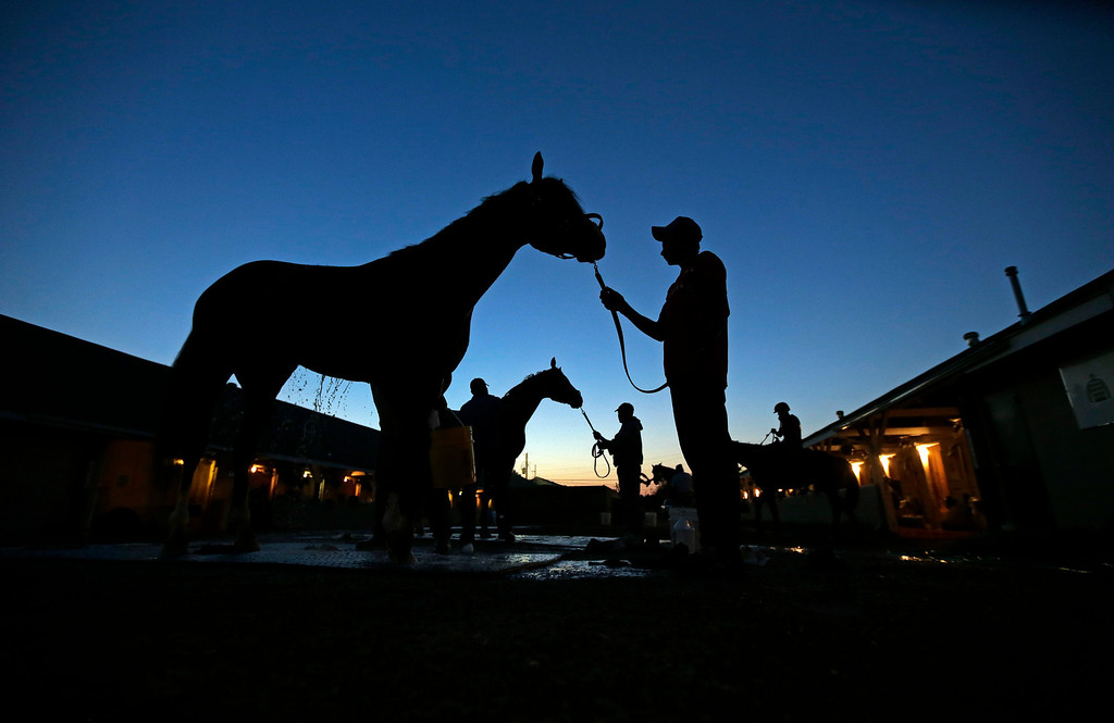 . Horses are washed after their morning workouts at Churchill Downs Wednesday, May 1, 2013, in Louisville, Ky. (AP Photo/Charlie Riedel)