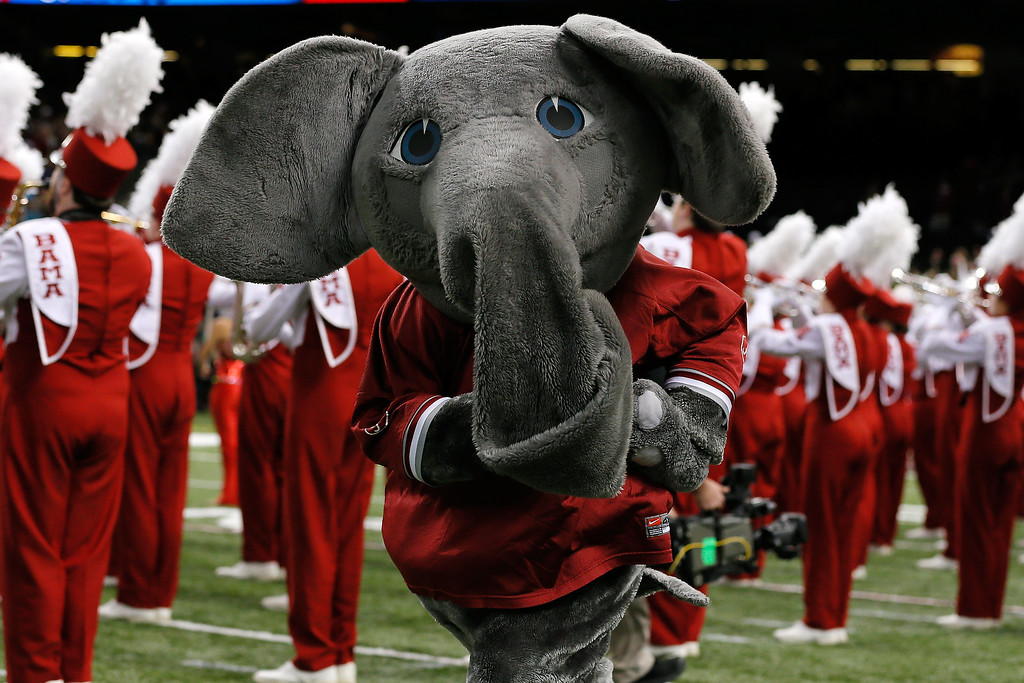 . NEW ORLEANS, LA - JANUARY 02:  Big Al, mascot of the Alabama Crimson Tide during the Allstate Sugar Bowl at the Mercedes-Benz Superdome on January 2, 2014 in New Orleans, Louisiana.  (Photo by Kevin C. Cox/Getty Images)