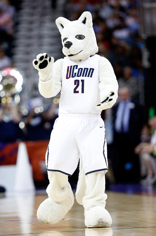 . The Connecticut Huskies mascot walks on the floor in the first half against the Louisville Cardinals during the 2013 NCAA Women\'s Final Four Championship at New Orleans Arena on April 9, 2013 in New Orleans, Louisiana.  (Photo by Chris Graythen/Getty Images)