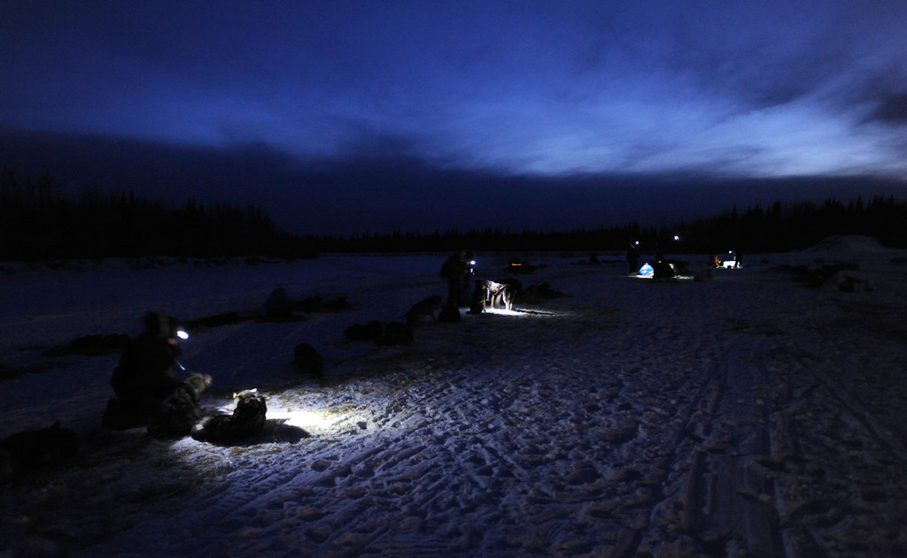 . Headlamps provide light for mushers and veterinarians working with sled dogs in the village of Nikolai, Alaska during the Iditarod Trail Sled Dog Race, Tuesday, March 5, 2013. (AP Photo/Anchorage Daily News, Bill Roth)