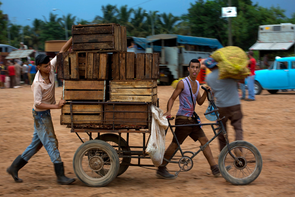 . In this Sept. 30, 2013 photo, young men men push a tricycle loaded with empty boxes they use to transport produce at the 114th Street Market on the outskirts of Havana, Cuba. The open-air bazaar has become a key hub for getting farm products to people in the capital. (AP Photo/Ramon Espinosa)
