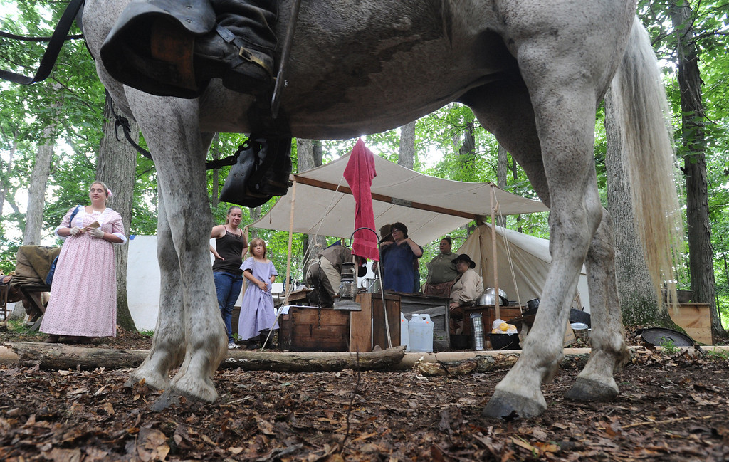 . Cricket, a horse belonging to Chris Slocum, who is a reenactor with the Southwest cavalry brigade, stands among the Confederate army\'s encampment in Gettysburg, Pa., for the 150th celebration of the Battle of Gettysburg on Thursday, June 27, 2013. (AP Photo/York Daily Record, Jason Plotkin)