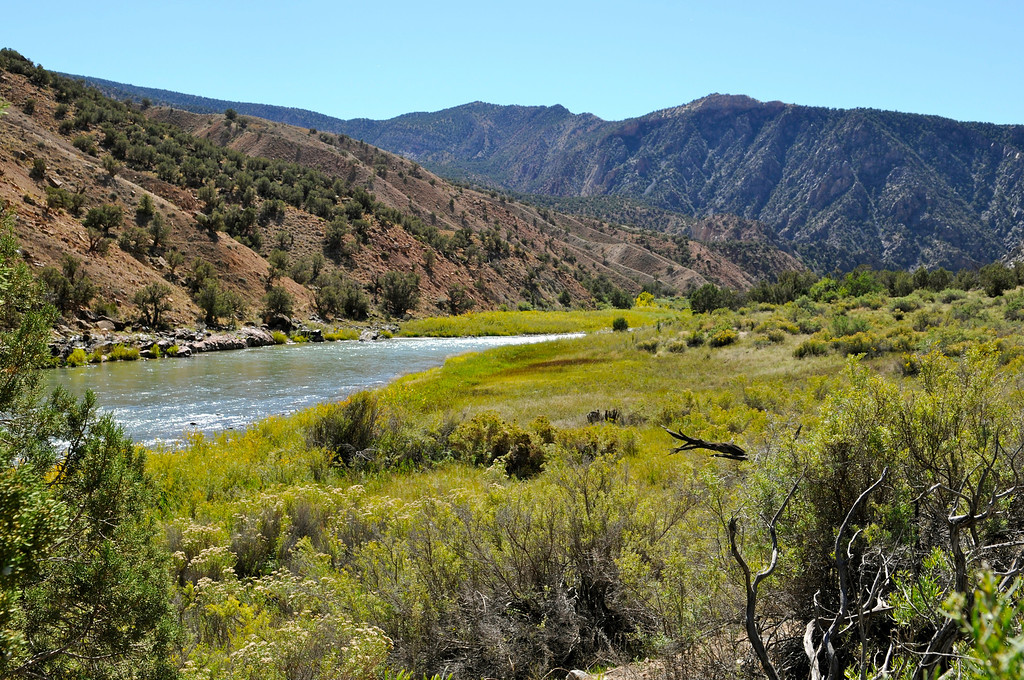 . Ute Park, in the heart of the Gunnison Gorge Wilderness Area, offers world-class fishing that is only accessible by boat or a four-mile hike from the rim of the gorge surrounding the Gunnison River\'s gold medal water. Scott Willoughby, The Denver Post