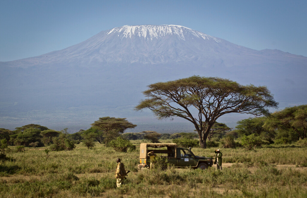 . In this Tuesday, Feb. 19, 2013 photo, the highest mountain in Africa, Mount Kilimanjaro in Tanzania, looms in the background as a team from the Kenya Wildlife Service (KWS) and the International Fund for Animal Welfare (IFAW) prepares to fit elephants with GPS-tracking collars at the Kimana Wildlife Sanctuary next to Amboseli National Park in southern Kenya, near the border with Tanzania. (AP Photo/Ben Curtis)