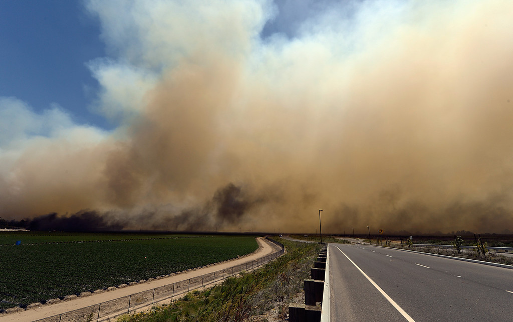 . A strawberry farm catches on fire near the California State University Chanel Islands on May 2, 2013 in Camarillo, California. Hundreds of firefighters are battling wind and dry conditions as over 6000 acres have already been burned northwest of Los Angeles.  (Photo by Kevork Djansezian/Getty Images)