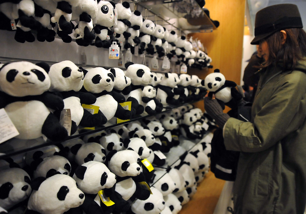 . A visitor looks at panda soft toys, on sale to mark the zoo\'s newest attraction -  Yuan Zai , the first Taiwan-born baby panda - at the Taipei City Zoo on January 6, 2014.   Yuan Zai, who weighed 180 grams (6.35 ounces) at birth, now weighs about 14 kilos (31 lbs) and make made her anticipated public debut as she turned six months old.      Mandy Cheng/AFP/Getty Images