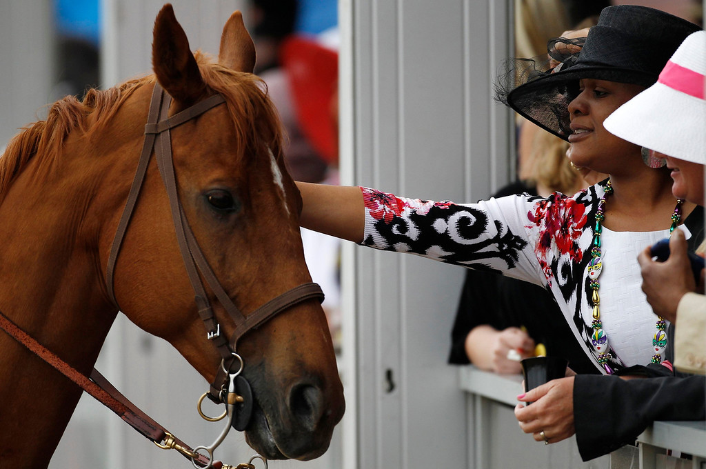 . Race-goers pet a track marshall\'s horse before the 138th running of the Preakness Stakes at Pimlico Race Course in Baltimore, Maryland, May 18, 2013.   REUTERS/Jonathan Ernst