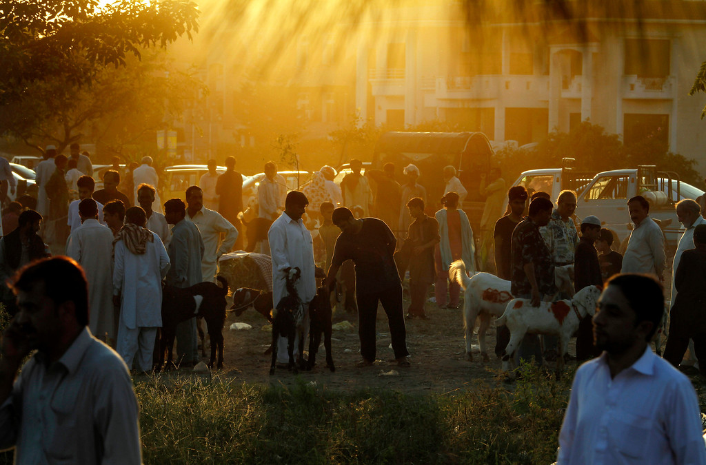 """. People visit a small livestock market to buy sacrificial animals for the Muslim holiday of Eid al-Adha, or \""""Feast of Sacrifice,\"""" in Islamabad, Pakistan on Tuesday, Oct. 15, 2013.  (AP Photo/Anjum Naveed)"""