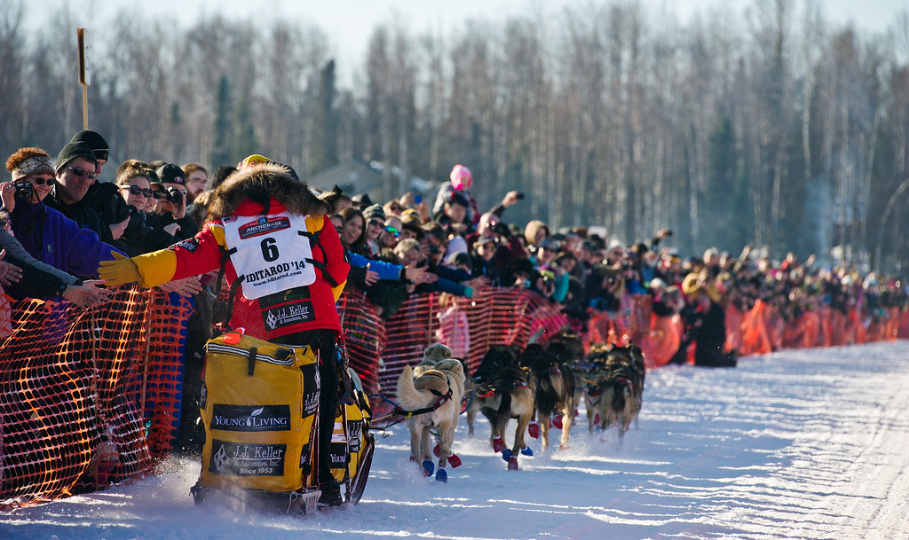 . Defending champion Mitch Seavey slaps hands with the crowd at the start of the Iditarod Trail Sled Dog Race, Sunday, March 2, 2014, in Willow, Alaska. (AP Photo/Anchorage Daily News, Marc Lester)