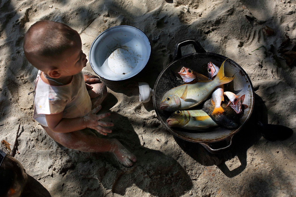 . In this Sunday, Feb. 9, 2014 photo, a Moken child, nomads of the sea, looks at a pan with freshly caught fish for lunch on Island 115 in Mergui Archipelago, Myanmar. The child is a part of a Moken group of several families spending 10 days hunting for squid and whatever else they can collect before returning to their village on another island toward Myanmar�s southwestern coast with a lacework of 800 islands, what is known as the Lost World. Isolated for decades by the country�s former military regime and piracy, the Mergui archipelago is thought by scientists to harbor some of the world�s most important marine biodiversity and looms as a lodestone for those eager to experience one of Asia�s last tourism frontiers before, as many fear, it succumbs to the ravages that have befallen many of the continent�s once pristine seascapes. (AP Photo/Altaf Qadri)