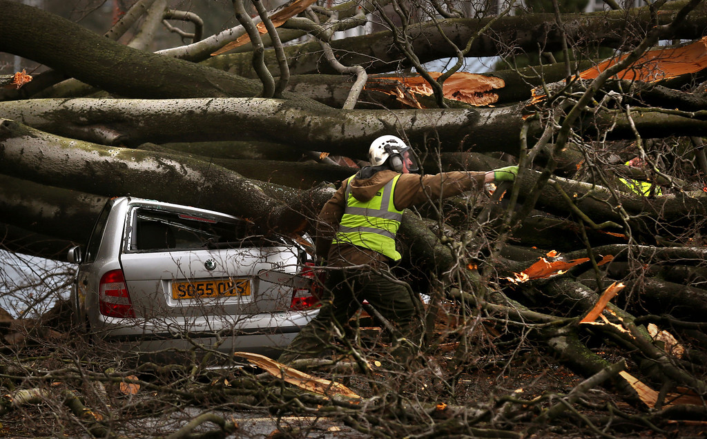 """. A tree surgeon works to remove a tree, blown down by the wind onto a car,  in Davidsons Mains, Edinburgh, Scotland, Thursday Dec. 5, 2013.  Gale-force winds hit Scotland on Thursday, causing a fatal truck accident, halting all trains and leaving tens of thousands of homes without electricity as much of northwestern Europe braced for a storm that was expected to bring flooding to coastal areas. Winds gusting up to 142 miles (229 kilometers) per hour were measured overnight in the Scottish Highlands, and many roads and bridges were closed. All train services in Scotland were suspended; Network Rail spokesman Nick King said that \""""there\'s too much debris and too much damage to equipment to continue. (AP Photo/PA, David Cheskin)"""