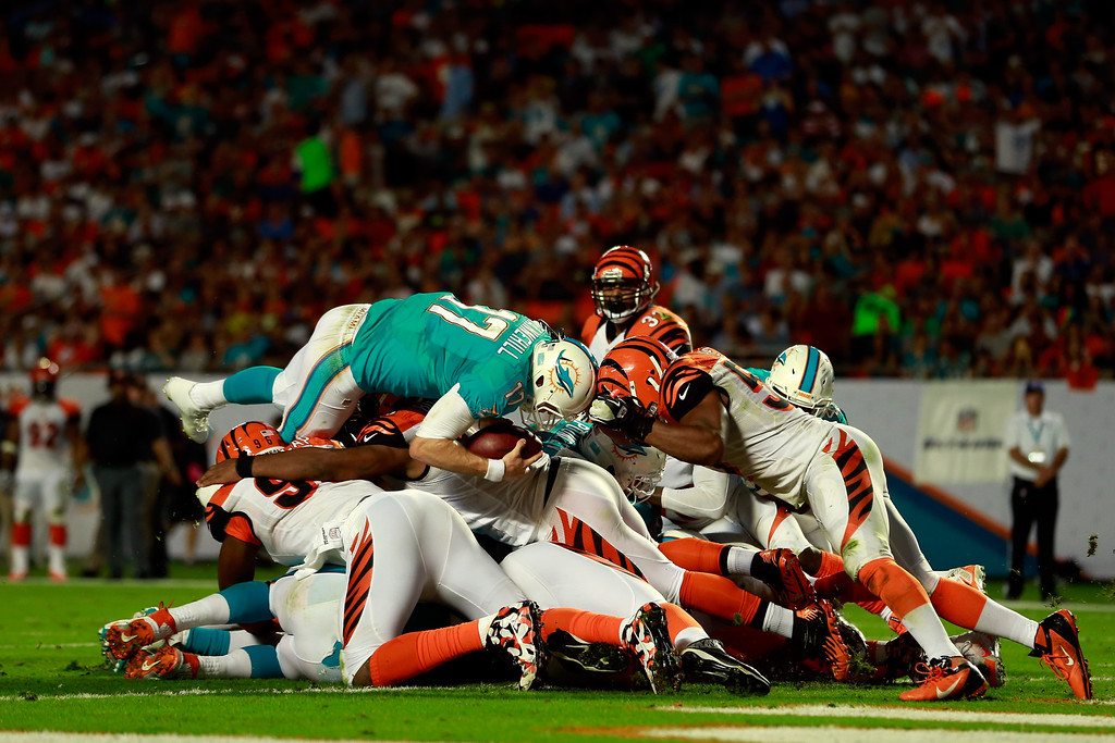 . MIAMI GARDENS, FL - OCTOBER 31: Ryan Tannehill #17 of the Miami Dolphins dives and scores a touchdown in the second quarter against the Cincinnati Bengals at Sun Life Stadium on October 31, 2013 in Miami Gardens, Florida.  (Photo by Chris Trotman/Getty Images)