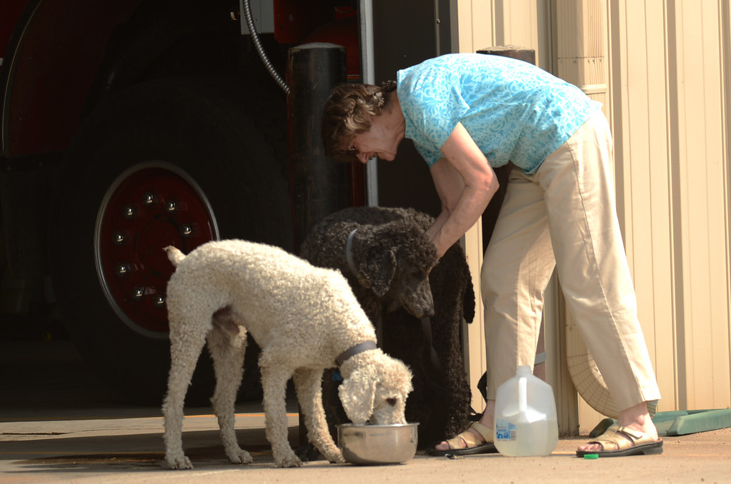 . CONIFER, CO. - June 19: Evacuee Nancy Warnar, evacuee of Lime Gulch Fire in Jefferson County gives water to her dogs at North Falk Volunteer Fire Station. Conifer, Colorado. June 19, 2013. A wildfire burning in south Jefferson County forced residents to evacuate their homes. (Photo By Hyoung Chang/The Denver Post)