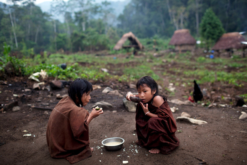 . In this Oct. 1, 2013 photo, Ashaninka Indian girls eat a breakfast of fish soup made with yuca and sweet potatoes in Kitamaronkani, Pichari district, Peru. The Ashaninka are the largest indigenous group in Peru�s sparsely populated Amazon region but still account for less than 1 percent of the South American country�s 30 million people. The people subsist largely on yuca, a diet they supplement with fish and wild rodents known as pacas. (AP Photo/Rodrigo Abd)