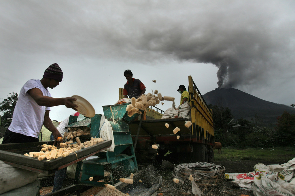 . Workers shell corn as Mount Sinabung is spewing volcanic ash in Berastepu, North Sumatra, Indonesia, Tuesday, Nov. 26, 2013. Authorities raised the alert status of the volcano to the highest level on Sunday after it had a series of eruptions. (AP Photo/Binsar Bakkara)