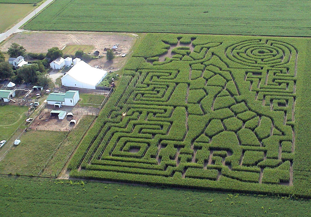 . This 2013 photo provided by the Idle-Hour Ranch shows their African safari-themed corn maze made by Maize Quest in Troy, Ohio. (AP Photo/Idle-Hour Ranch)