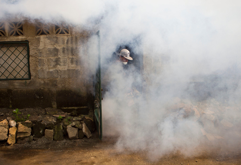 . A worker from the Nicaraguan health ministry appears from a doorway in a cloud of insecticide after fumigating a home in Managua, Nicaragua, Thursday, Oct. 31, 2013. According to the government, more than 5,000 cases of dengue have been reported this year and has claimed 14 lives. (AP Photo/Esteban Felix)