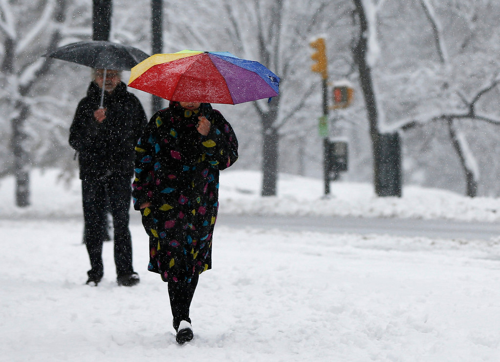 . People walk through Central Park in the snow in New York March 8, 2013. REUTERS/Shannon Stapleton
