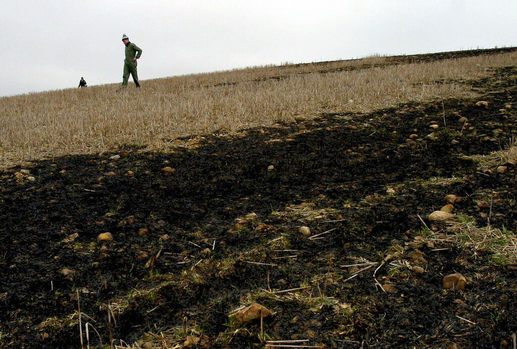 . A local man looks at charred grass 05 January 2004 following a fire provoked by a meteorite that fell 04 January 2004 in the vicinity of the Spanish town of Renedo de Valderaduey, near Leon.   PEDRO ARMESTRE/AFP/Getty Images