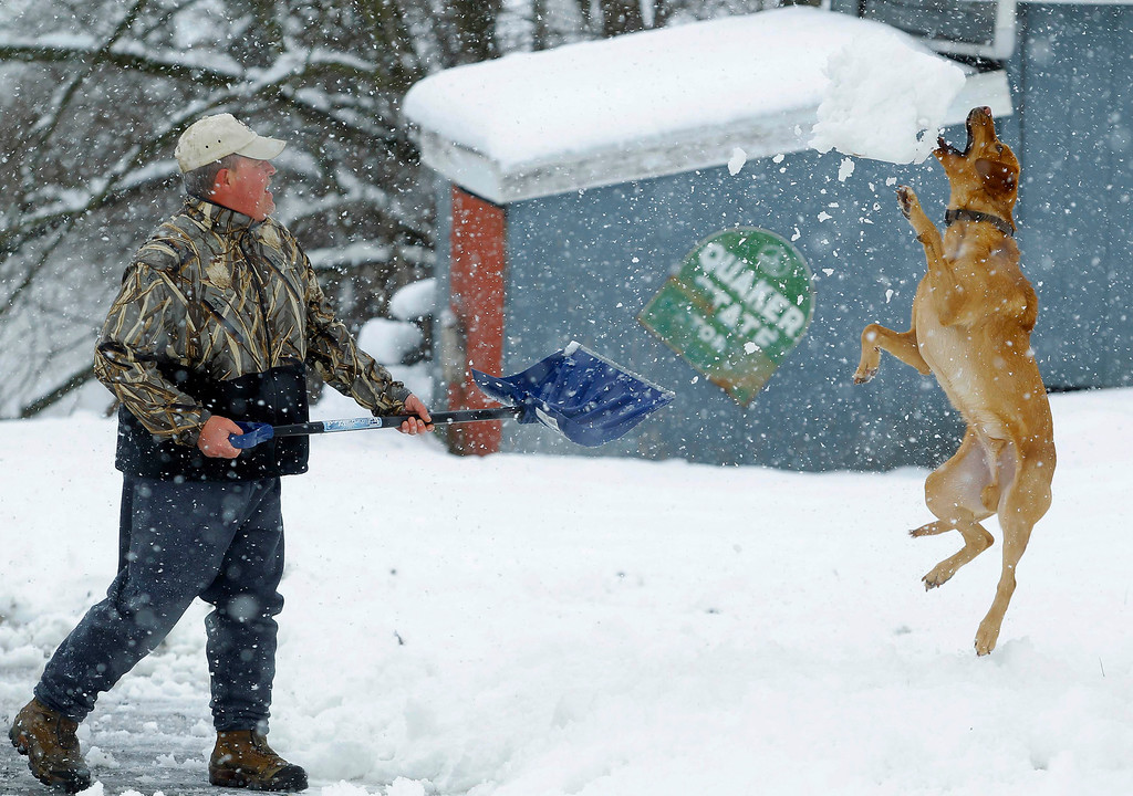 . Bill Groves plays with his dog Red while shovelling snow during a massive blizzard near Mt. Jackson, Virginia March 6, 2013. Washington and its suburbs face what could be their heaviest snowfall in two years on Wednesday, as a fierce storm headed east after blanketing the Midwestern United States, snarling traffic and causing hundreds of flight cancellations. REUTERS/Gary Cameron