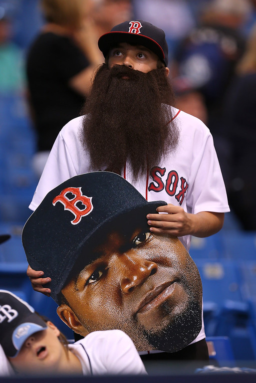 . A Boston Red Sox fan wears a beard during warm ups prior to Game Three of the American League Division Series against the Tampa Bay Rays at Tropicana Field on October 7, 2013 in St Petersburg, Florida.  (Photo by Mike Ehrmann/Getty Images)