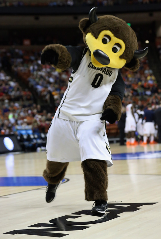 . AUSTIN, TX - MARCH 22:  The Colorado Buffaloes mascot Chip performs during the second round of the 2013 NCAA Men\'s Basketball Tournament at The Frank Erwin Center on March 22, 2013 in Austin, Texas.  (Photo by Stephen Dunn/Getty Images)