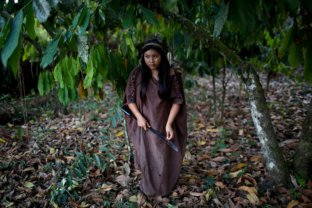 . In this Sept. 26, 2013 photo, Ashaninka Indian Evelyn Vargas returns to her home after cutting firewood she will use to cook dinner for her family, in Otari Nativo, Pichari district, Peru. Otari, one of 350 Ashaninka communities, lies in the Apurimac river valley, the No. 1 coca-producing valley in the world. Most of Otari�s inhabitants grow coca and chew it as their ancestors have. But they also resist efforts to fell their forests to plant coca for commercial use. (AP Photo/Rodrigo Abd)