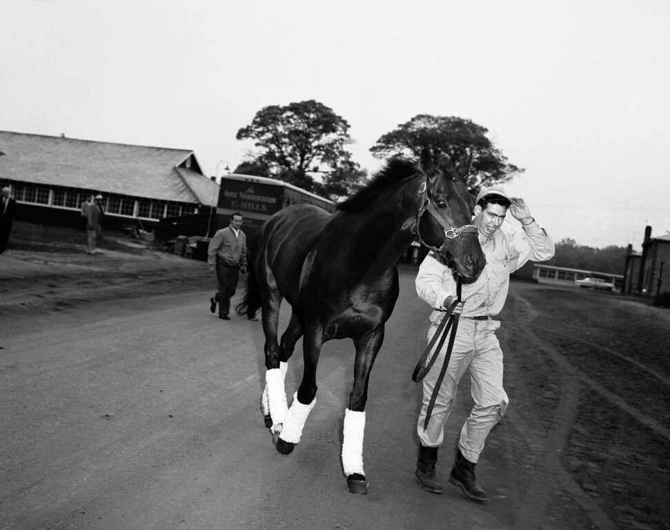 . Tim Tam, Calumet speedster that already has two legs on the Triple Crown for three-year-olds, walks to stable at Belmont Park, New York, May 25, 1958 after arriving by van from Pimlico Race track in Baltimore. Groom Walter Perkins walks with Tim Tam. Tim Tam finished second in the Belmont Stakes to Cavan on June 7. (AP Photo/Jacob Harris)