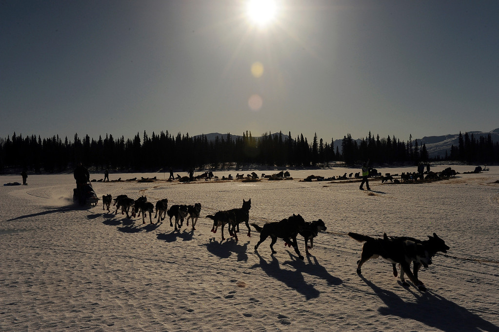 . In this March 3, 2014 photo, a musher leaves the Rainy Pass checkpoint during the 2014 Iditarod Trail Sled Dog Race near Puntilla Lake, Alaska. (AP Photo/The Anchorage Daily News, Bob Hallinen)
